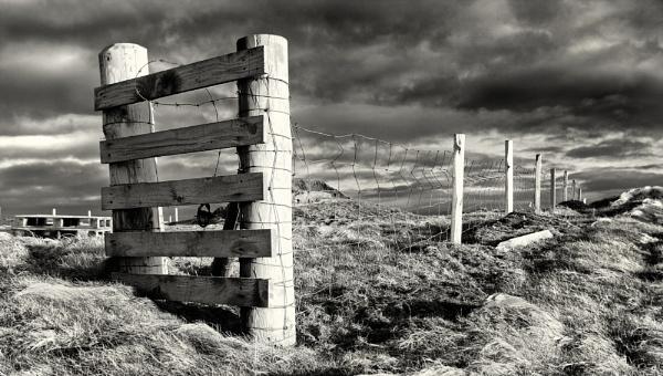 Shetland Fence by scrimmy
