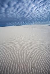 Tracks in the gypsum, White Sands