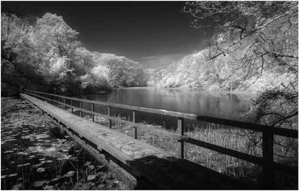Bosherston by daibev