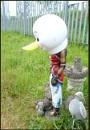 Donald by JawDborn