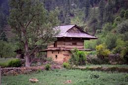Saraj valley[Mandi] India 2