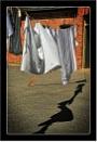 Saturday Shadow by dven