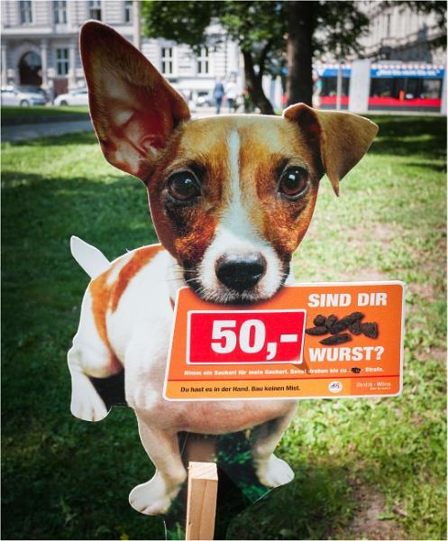 Dog doo - don\'t! by KingBee