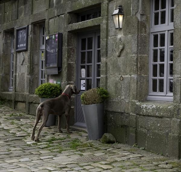Anyone Home? by SandraKay