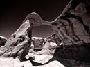 The Devils Garden by mlseawell
