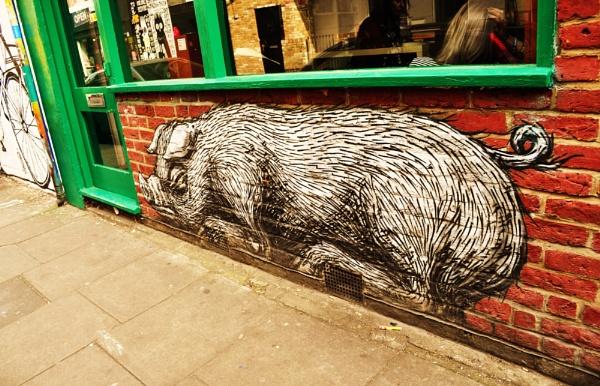The sleeping pig! by Chinga