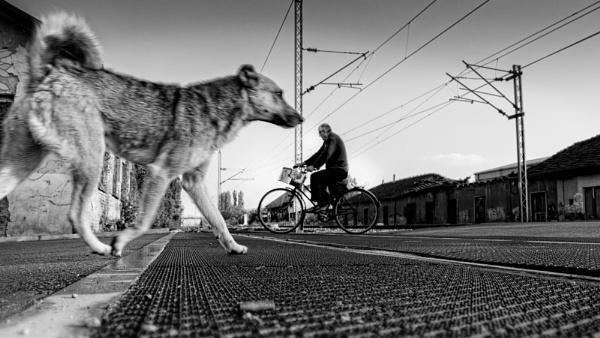 Urban Scene CXXXVII by MileJanjic