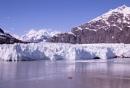 Margerie Glacier Alaska by Janetdinah