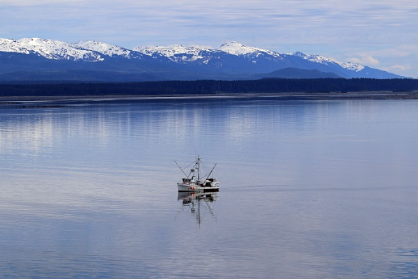 Fishing for Halibut, Alaska by Janetdinah