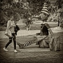 don't be a schmuck, pinocchio by leo_nid