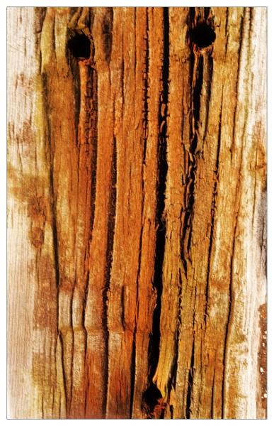 weathered wood by bliba