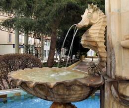 Seahorse in Duck Square