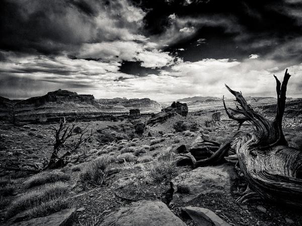 Desert Edge by mlseawell