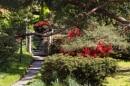 Glenarn Gardens by Irishkate