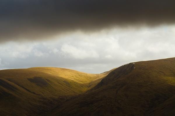 Scottish Borders by Consulo