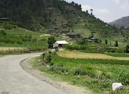 Village Janjehli[Mandi] India