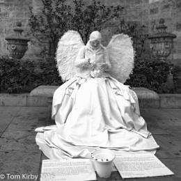 White Angel Valencia
