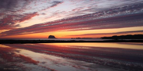 Bass Rock Dawn by DavidCookson
