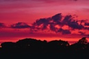 Sunset & SIlhouette by sjcphotography at 03/06/2017 - 12:16 PM