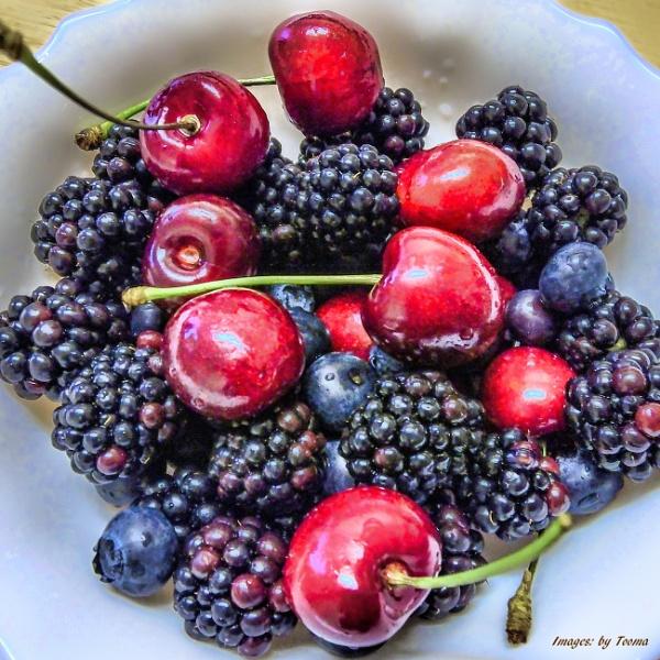 Still Fruit.
