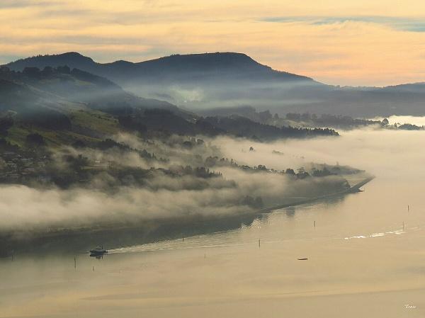 Otago Harbour 1 by DevilsAdvocate