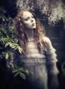 Gemma by kenp666