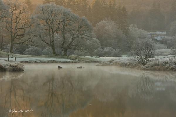 Winter Reflections by janlea