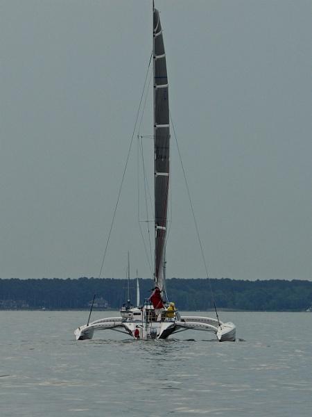 sailing on the Chesapeake #7 by handlerstudio