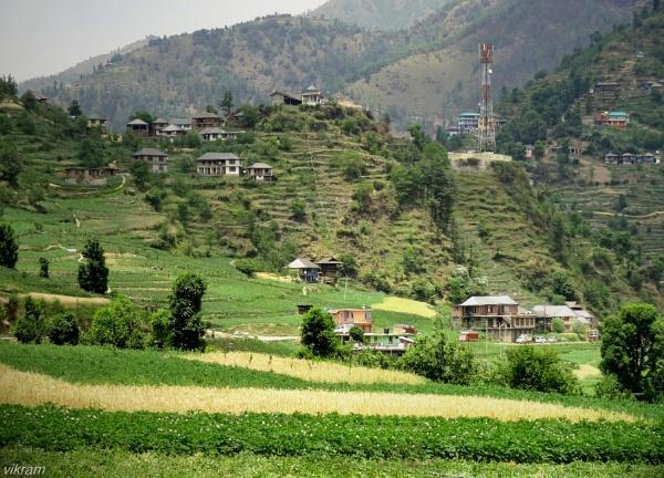 Janjehli Village valley  Mandi [India] by Bantu