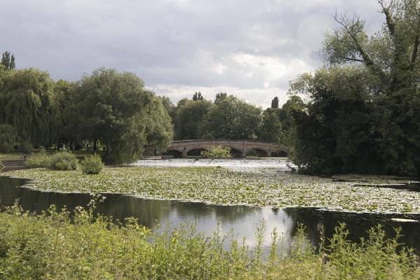 Abbey Park Bridge by admphotography