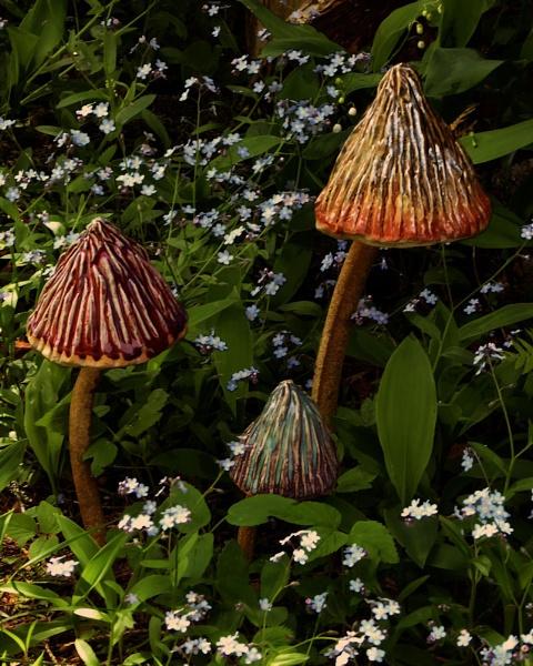 Magic Mushrooms by Joline