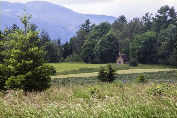 Little Cabin on the Farm by Daisymaye