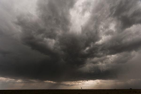 Storm bringer by rontear