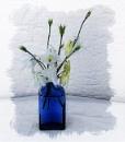Columbine in Blue Bottle by Irishkate