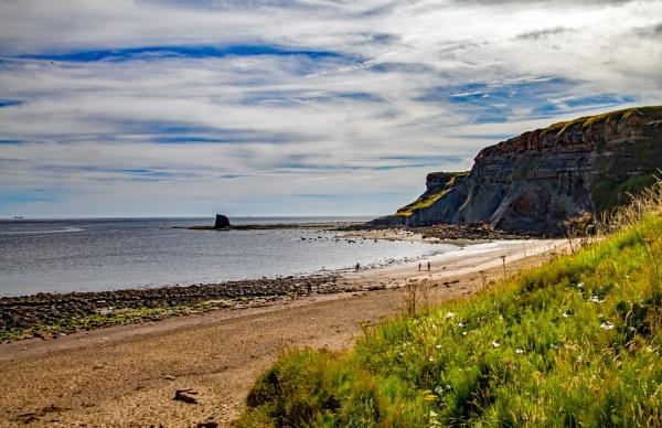 Saltwick Bay by pat_hopkins