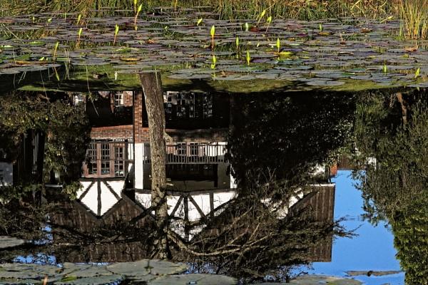 A Reflection. by johnke