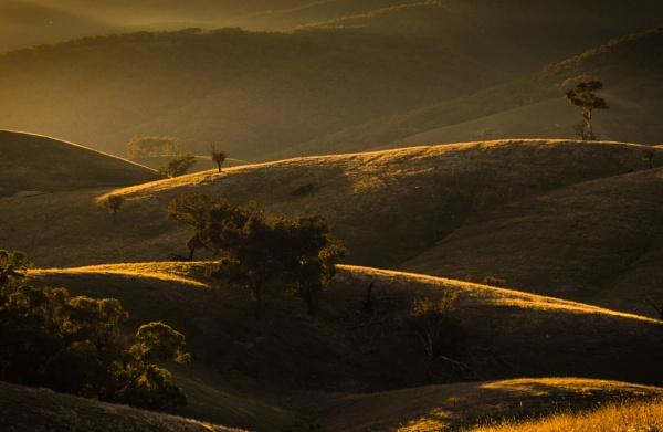 Evening, Sawyers Gully by BobinAus