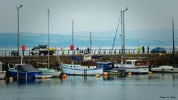 Harbour Activity.