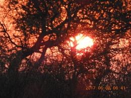 Sunrise in Krugerpark SA.