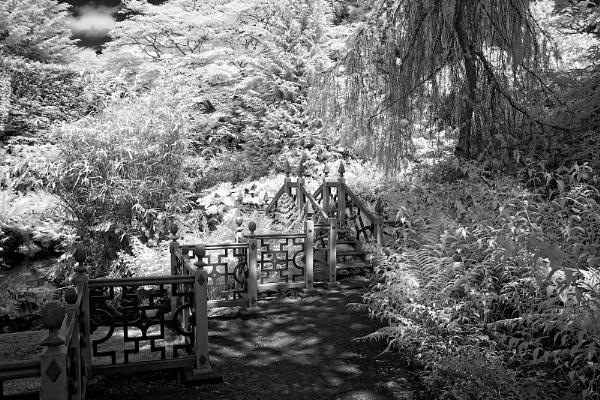 Biddulph chinese gardens in IR by Draig37