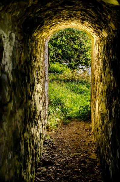 Sunlit  tunnel by Craigie10