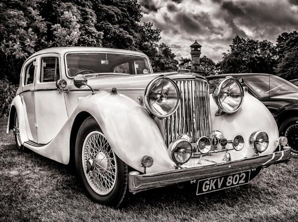 Jaguar by ChrisBanks