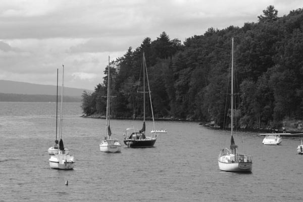 Sailboats On Their Moorings, Kingsland Bay, Lake Champlain, Vergennes, Vt by gconant