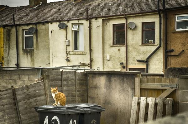 Back Street Accrington Lancashire by iangilmour