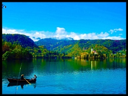 Bled rowing