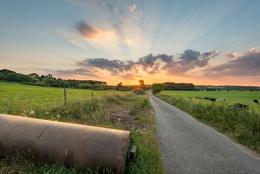 Sonning Sunset