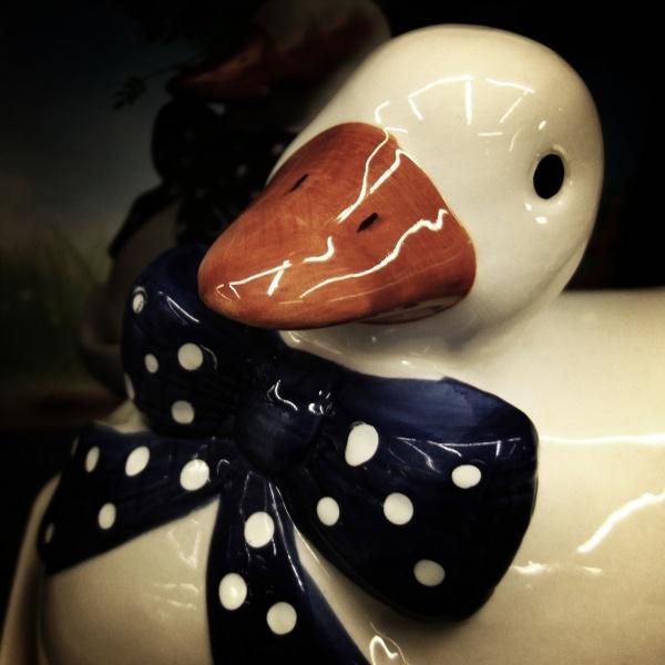 bow tie duck
