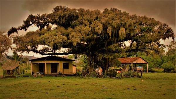 BRAZIL - Back Roads Vista No.1 by PentaxBro