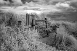 Dune Gate