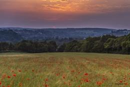 Photo : Summer Solstice Sunset